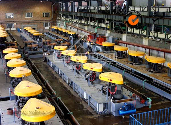 Scheelite Flotation Production Line